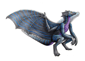 Commission: Draelen by Rebeccannoying