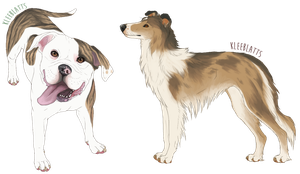 Doges for Scruffymongrel! by kleeblatts