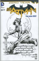 Catwoman sketch cover by rattlesnapper
