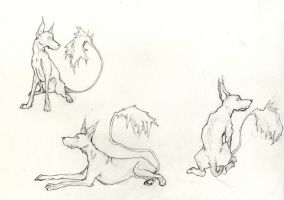 Coyote - Poses by Art-Stew-Frou-Frou