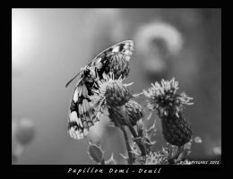 marble white by bracketting94
