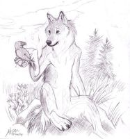 Wolf sketch by Atan