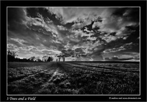 3 Trees and a Field by Andrew-and-Seven