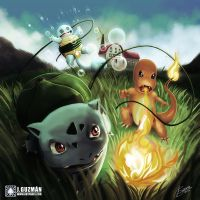 Pokemon Starters by Z3ros