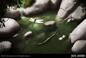 I Follow Rivers by Julio-Lacerda