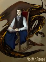 POI / Dragoncave - No ! Mr.Reese by Ranunculaceae