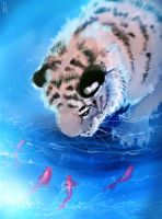 Scetch Tiger Water by Ti-R