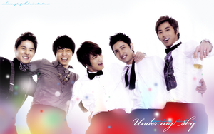 Happy Valentine's Day - DBSK by mkiseasytospell