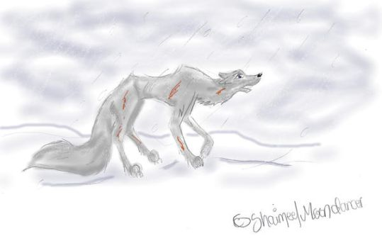 ::Hopeless in the snow:: by Shaimee