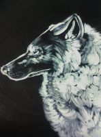 Wolf Painting. by Sessieinabox