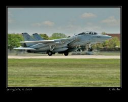 Tomcat by jdmimages