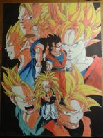 Dragon Ball Z by FreeKatana