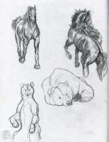 animal sketches by PickedPockets