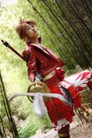 Sanada Yukimura: Dog of Takeda by twinklee