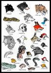 Jungle Book Critters by devilkais