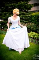 Cinderella - A Dream is a Wish 2 by LiquidCocaine-Photos