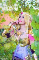 Zelda from Hyrule Warriors by azulettecosplay