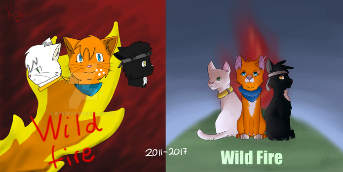 Draw this again - Wild fire -  2011-2017 by IronMeow