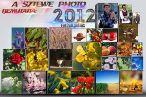 Collage of 2012s best by sztewe