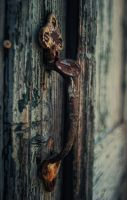 Old door 2 by DakrErebus