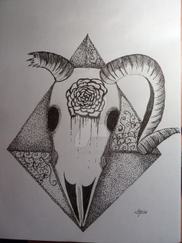 Aries Skull by drums-r-cool