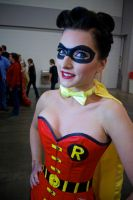 Gender bender Robin by Alkali Lake by Ectogammot