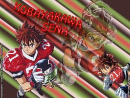 Kobayakawa Sena wallpaper by ItachiGrayDLuffy