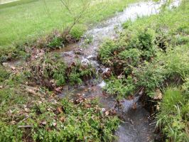 Sudden stream by Sheighness