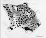 Leopard by LionessFortune