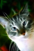 Fractal Cat by l3viathan2142
