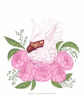 A Griffin and Pink Peonies by francis-john