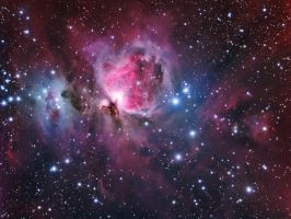 The Orion Nebula Region by turbulentvortex