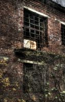 Abandoned window by DenChetto