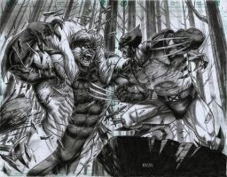 SABRETOOTH vs WOLVERINE by grandizer05