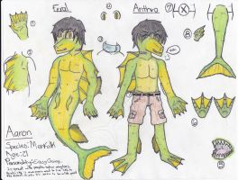 Aaron : Reference by Bradley-The-Blue-Fox