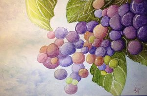 Grapes on the Vine by ArtVio
