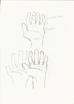 Sketch of a hand by TheAnimeMaster