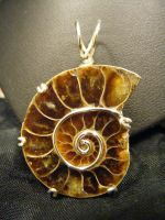 Simple wrapped ammonite pendant by BacktoEarthCreations