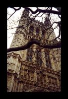 Westminster Abbey by Emhain