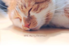 2012_Merry Christmas by ericzoe