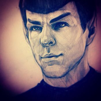 Mr Spock by DafnaWinchester