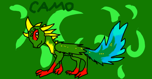 Camo by Zorceus