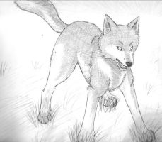 Wolfie by wolfsouled