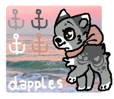 .: Dapples Refarence :. by fIaqs