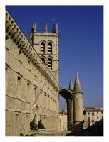Cathedrale Montpellier by melium