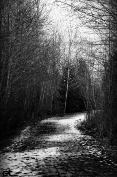 The Way by emeal