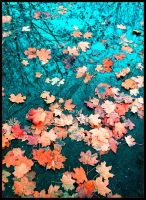 Signs of the Autumn by heldenriff