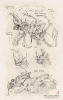 Chamidillo and Antidillo Creature sketches by MIKECORRIERO