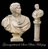 Stone Busts Male 2 png by GRANNYSATTICSTOCK