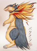 Trade Commission - Typhlosion by Kiriska